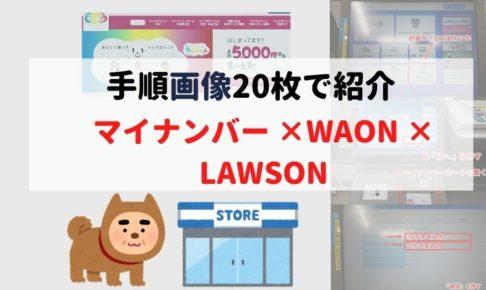mynumber-waon-lawson-step-title